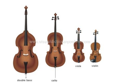 violin-family