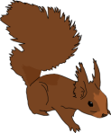 gingercoons_Squirrel