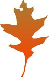 leaf_oak