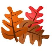 leavesns